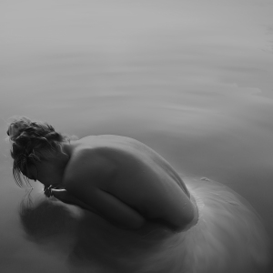 Swan Lake 1, APPLE