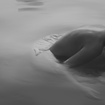 Swan Lake 4, APPLE